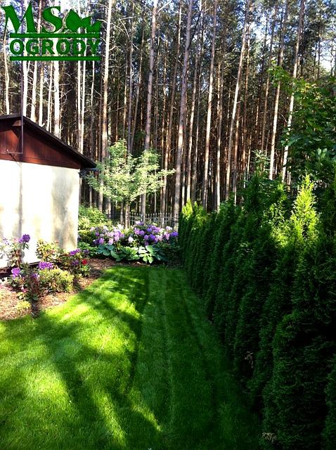 Trawnik wykonany na kratce trawnikowej